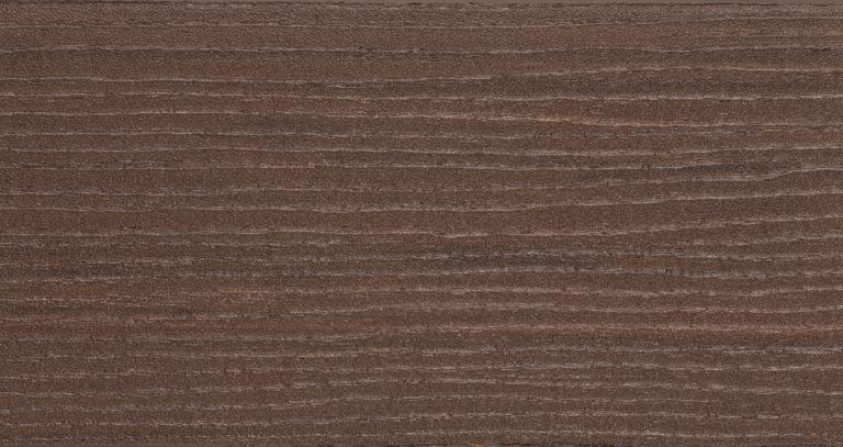 Acacia arbor close up