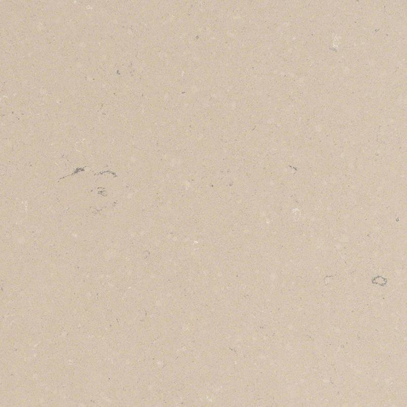 Fossil Taupe Schillings