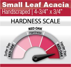 Small Leaf Acacia 4-3-4- x 3-4-