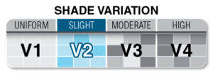 V2 Scale