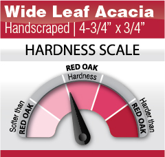 """Wide Leaf Acacia 4-3-4"""" x 3-4"""""""